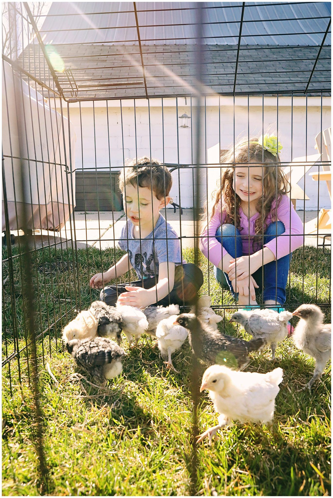 Raising Farm Kids and Chickens